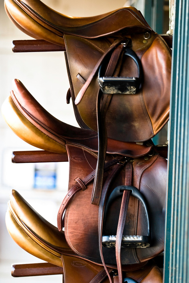 saddles up