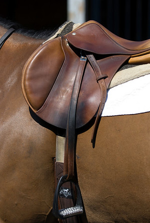 saturnia horse show 122-49