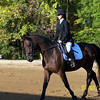 Kate and Radetzky <br /> Danish Warmblood<br /> First Dressage Show 2003