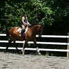 Nicole on Radetzky<br /> Danish Warmblood<br /> Shire Stables 2004