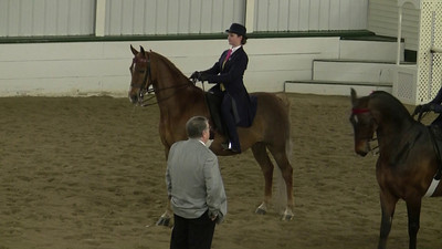 Savannah riding Merlin. Class 25, Saddle and Bridle's ASB Pleasure Equitation Medallion. This is only the pattern portion.