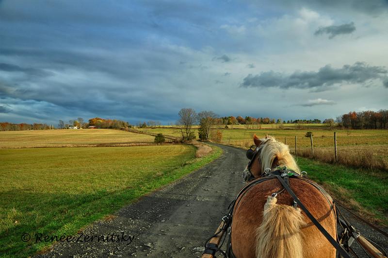 Lenape Lane Carriage Way