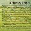 A Horses Prayer