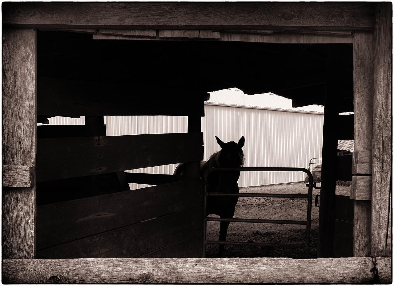 Coester Barn  09 22 12  053
