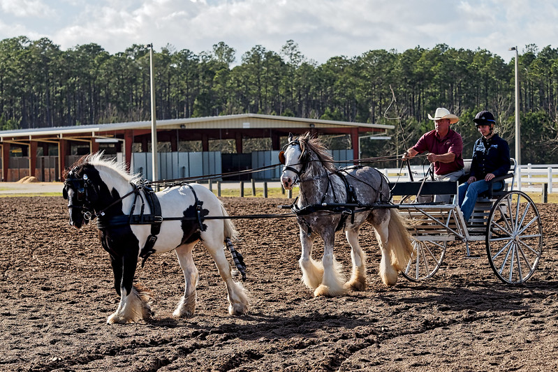 Jacksonville Feathered Horse Classic
