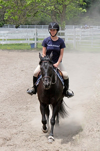 Beautiful horse and rider at Nassau Equestrian Center