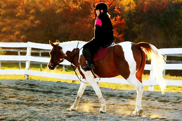 Sweet Heart Pony