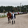 Winter Dressage on the First Coast
