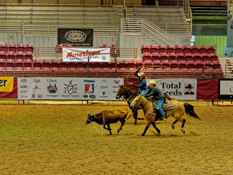Steer Roping Competition