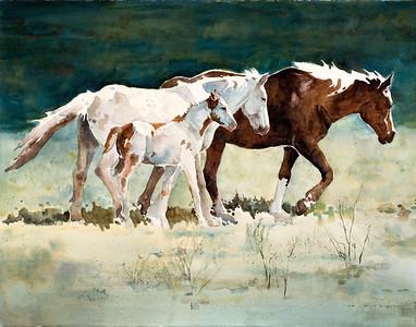 Mustang Three