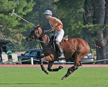 Polo-Pony at Bethpage State Park.