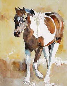 Zelma's Paint