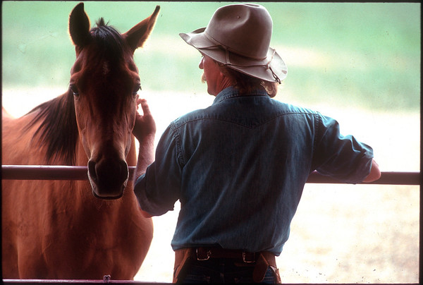 Whisper #2 16x24 Printed /framed $500.  Animal trainer Sand Reed Steamboat, Colorado