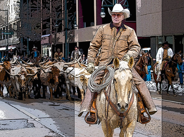 January 13, 2009 Denver, Colorado --  Searle Ranch Texas longhorns parade through downtown Denver as the National Western Stock Show kick off it's 102nd year. Photo: Michael Rieger