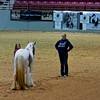 Jacksonville Feathered Horse Classic Gypsy