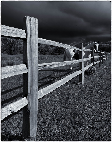 Fence  08 19 12  002-2