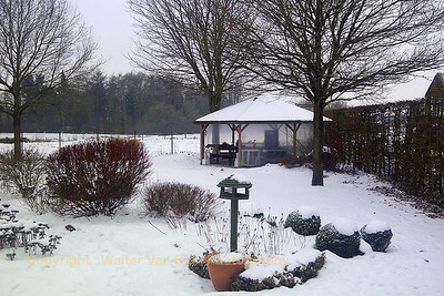 Garden during winter, January, 26th 2013 (shot with BlackBerry).