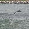 Date:  8/29/12 <br /> Location:  Cape Canaveral, FL