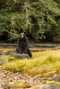 Black bear having a casual seat on a stone.