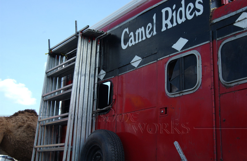 Shabby Traveling Circus Trailer with Camel