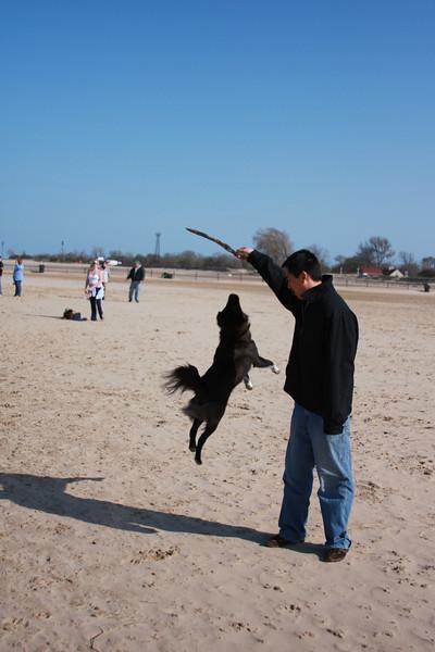 Stick jumping