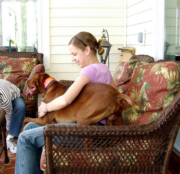 Hunnie really liked Mary and would not leave her lap!