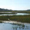 marsh creek