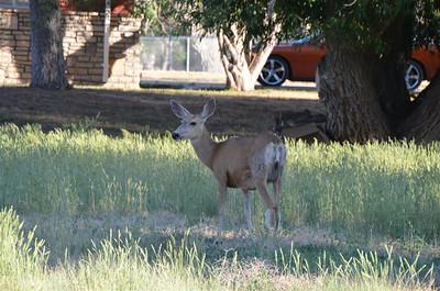 At Rawlins Wyoming