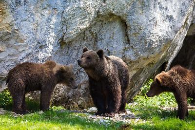 Mutter mit Jungen