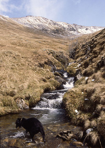 Playing find the stone in a stream below Mullach Fraoch Coire, Kintail, Scotland