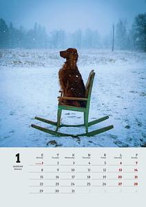Fiona_kalender 2018.indd