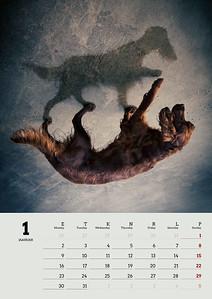 Fiona_kalender_pr1-1