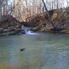 The swimming hole is open for business (but still cold for swimmers with two feet)
