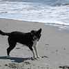 Kenda's first trip to the beach - Folly Island, SC 13 March 2011