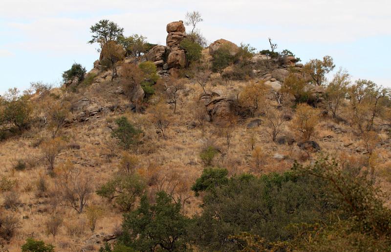 Kruger National Park - Berg-en-Dal area