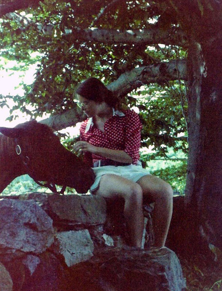 1969 or 1970 - a horse in a pasture in Mt. Kisco, NY