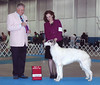 Winner's Bitch & Best of Opposite for a 3 point major under breeder-judge Dr. Richard Meen (Kishniga). 9/10/06 in Greely, Colorado. This, just 3 days from getting off a plane from Alberta, Canada.