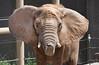 Seneca Park Zoo, Rochester,NY