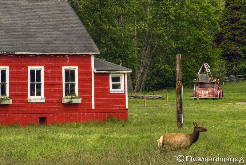 Elk Schoolhouse