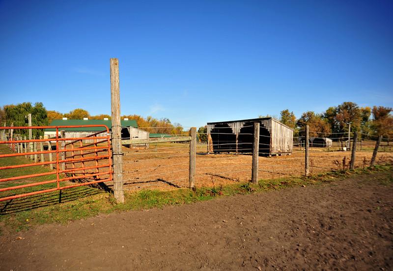 Ranch - 01