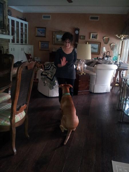 Mom helps train me