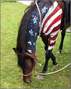 """PATRIOT"", July 4th, Wrangell, Alaska, USA."