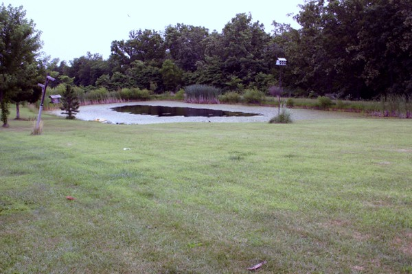 Front Pond