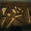 July 24, 2010.  Ancient black bear bones inside Oregon Caves NM, NPS, Oregon.