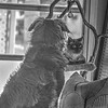 Paws and Bear (photo5,fsc)2018-04-21-