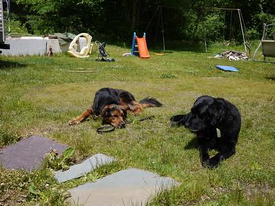 Bear Hanson 20100608P1040905