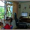 2011-08-12_P1040008_Paws