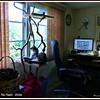 2011-08-12_P1040007_Paws