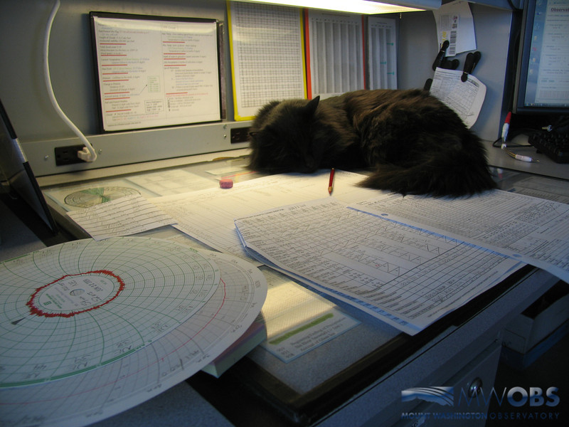 Marty And Weather Charts