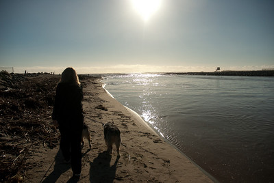 Mate & Marley at Beach 2010